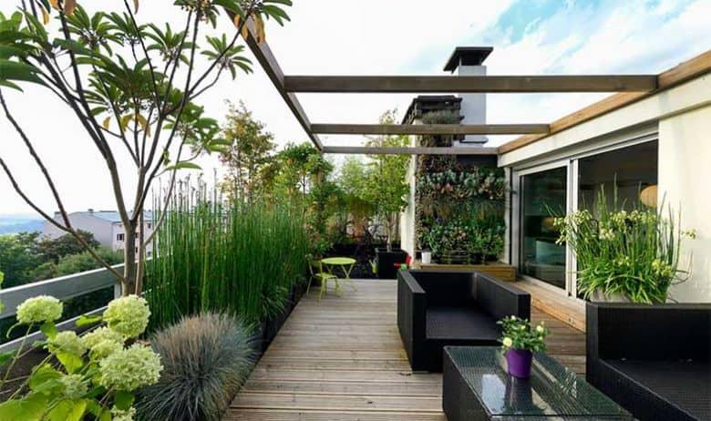 Mengenal 10 Jenis Tanaman untuk Roof Garden