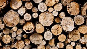 kayu konstruksi
