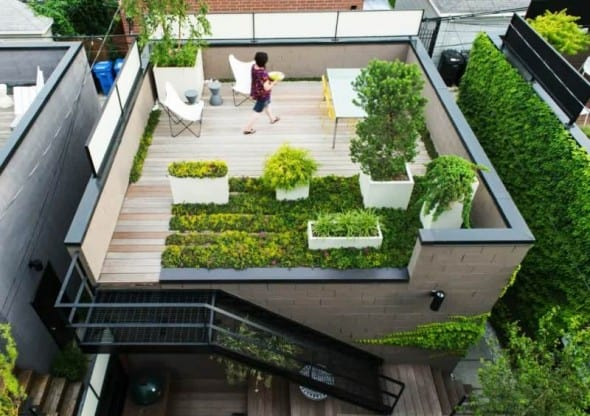 7 Cara Membuat Taman diatas Atap Rumah Tinggal
