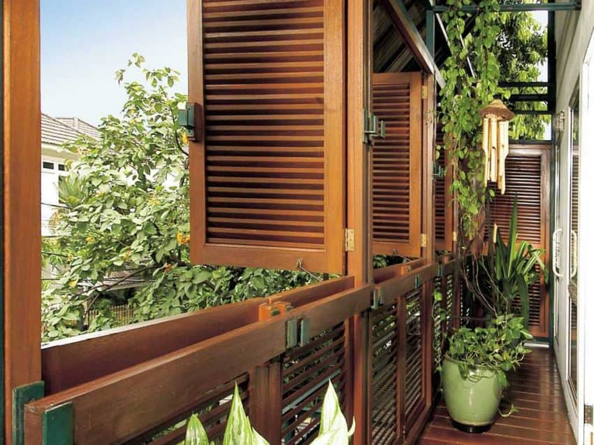 Mengintip 12 Tanaman Hias untuk Balkon