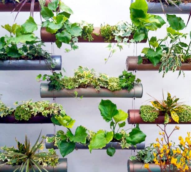 6 Cara Membuat Vertical Garden dari Paralon