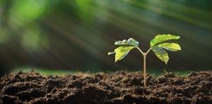 lubang biopori manfaat