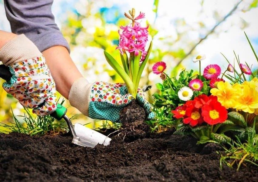 4 Cara Membuat Kompos dari Sampah Rumah Tangga