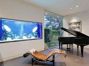 aquarium sederhana