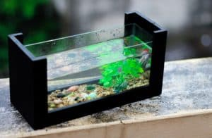 alat pembersih aquarium otomatis