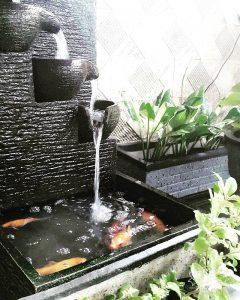 6 desain air terjun kolam ikan untuk di rumah - rumahlia
