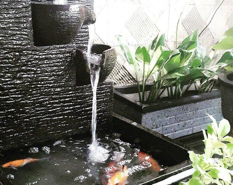 6 Desain Air Terjun Kolam Ikan untuk di Rumah