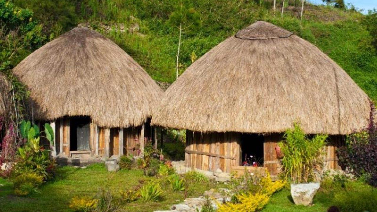 55 Gambar Rumah Adat Baileo Dan Keunikannya Terbaik Koleksi Gambar Rumah Terlengkap